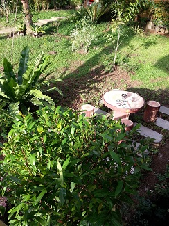 Image Result For Home And Garden Quezon Citya